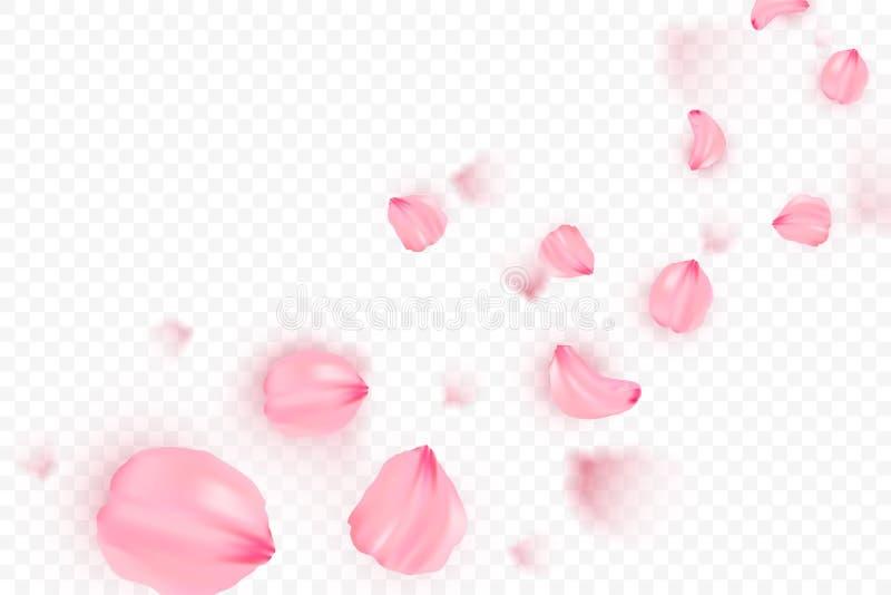 De roze vectorachtergrond van sakura dalende bloemblaadjes 3D romantische illustratie De kaart van de liefde vector illustratie