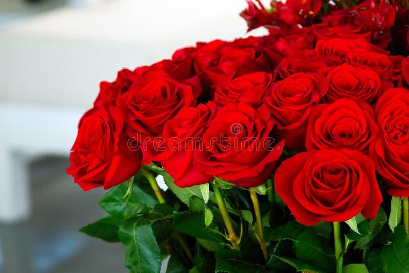De rozen royalty-vrije stock foto's