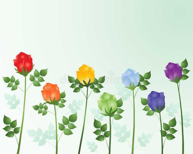 De rozen van de regenboog stock illustratie