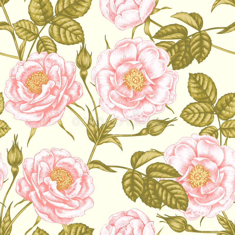 De rozen van de tuin Naadloos bloemenpatroon in Victoriaanse stijl vector illustratie