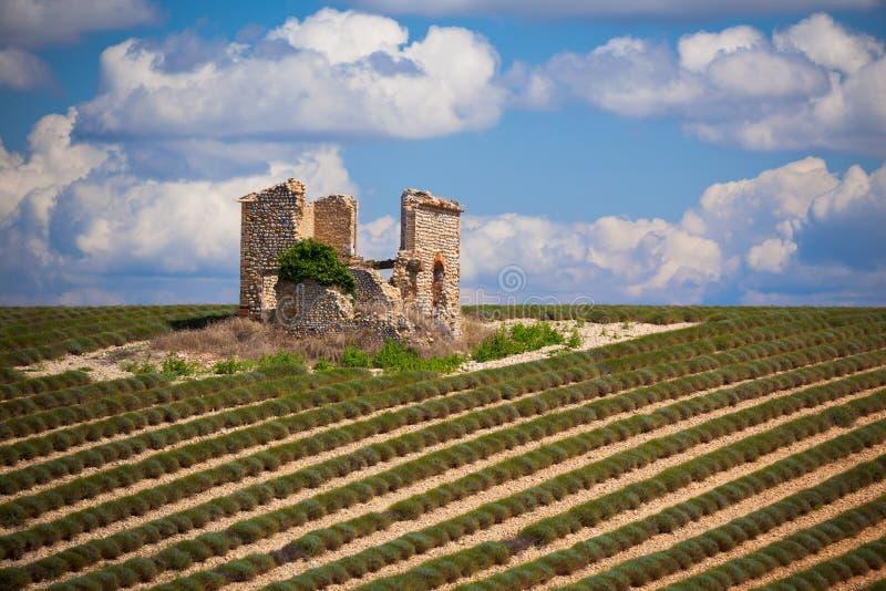 De ruïne van het steenhuis op geoogst lavendelgebied royalty-vrije stock afbeeldingen