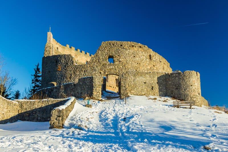 De Ruïnes van het Eisenbergkasteel in de winter stock foto