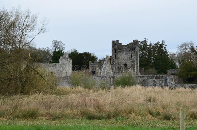 De Ruïnes van het steenkasteel van Desmond Castle in Adare Ierland royalty-vrije stock fotografie