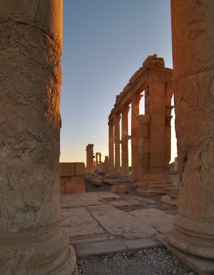 De ruïnes van Palmyra in Syrië stock afbeeldingen