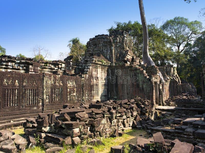 De ruïnes van tempelpreah Khan (12de Eeuw) in Angkor Wat, Siem oogsten, Kambodja royalty-vrije stock foto's