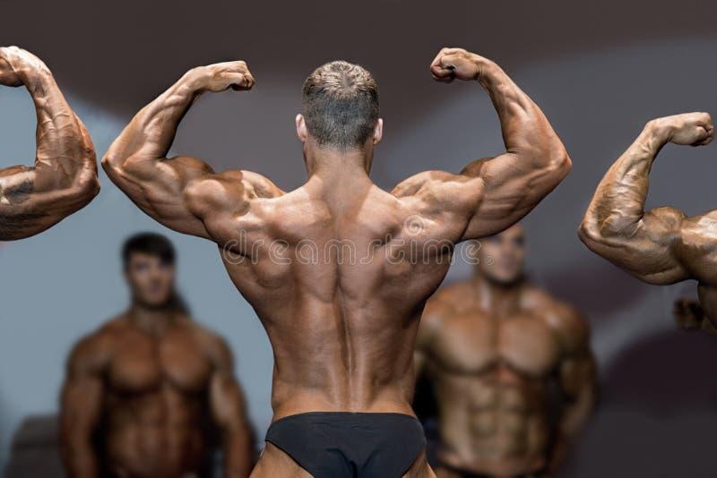 De rug en de bicepsen van de bodybuilderverbuiging royalty-vrije stock afbeelding