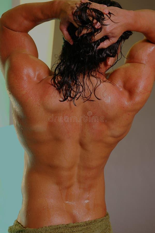 De rug van de spier stock foto
