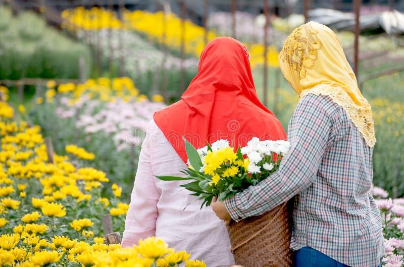 De rug van twee Moslimarbeidersmeisjes verzamelt de bloemen in tuin tijdens dagtijd met één rode hijab van de meisjesslijtage en stock fotografie