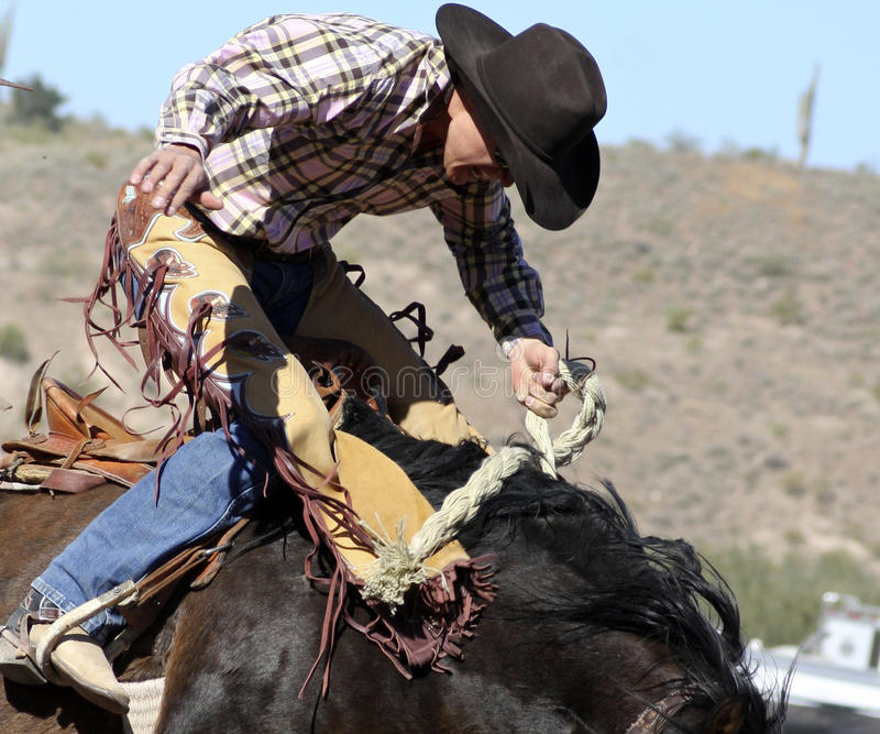 De Ruiter van Bucking Bronc van de rodeo royalty-vrije stock fotografie
