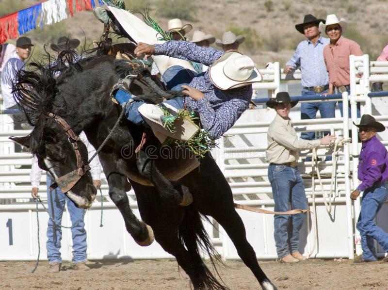 De Ruiter van Bucking Bronc van de rodeo royalty-vrije stock afbeelding