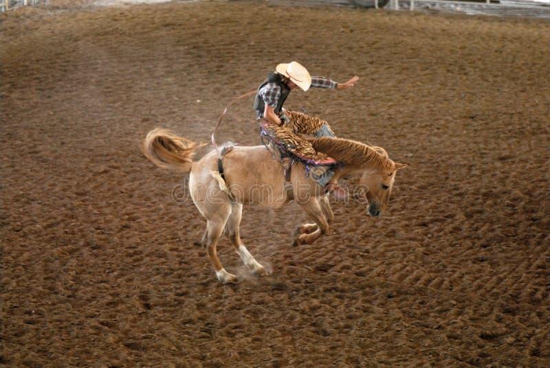 De Ruiter van de rodeo in Texas stock fotografie