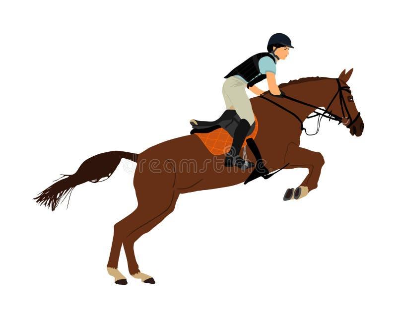 De ruiterruiter in het springen over barrière toont Elegant het rennen paard in galop vectorillustratie die op witte achtergrond  stock illustratie