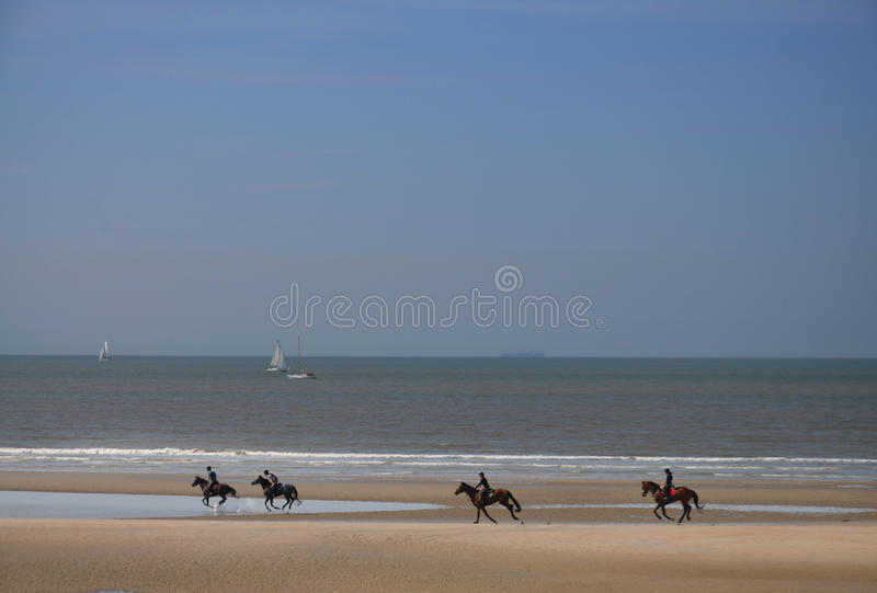 De ruiters die langs het strand galopperen stock fotografie