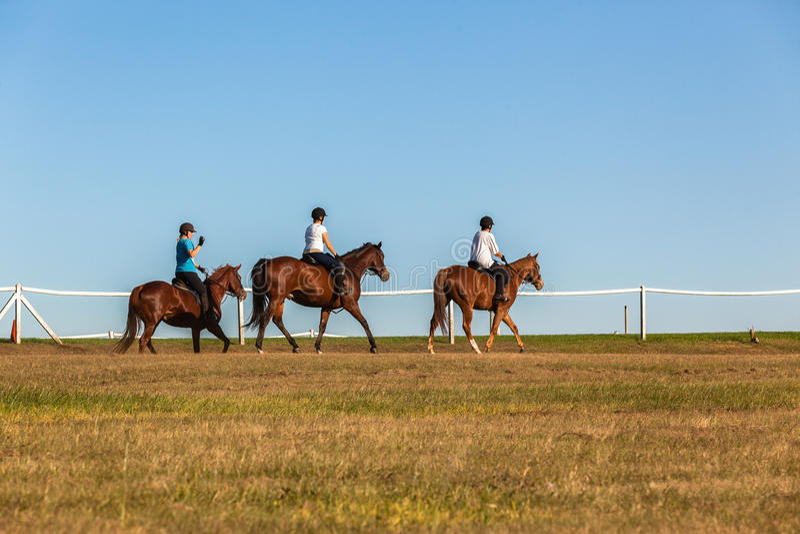 De Ruiters van paardenvrouwen royalty-vrije stock foto's