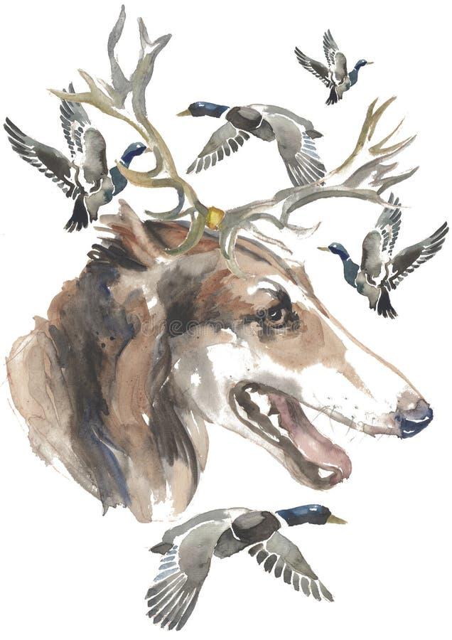 De Russische windhond, de kaartontwerpen van jagershonden, editable embleem, u kan uw embleem of tekst ingaan vector illustratie