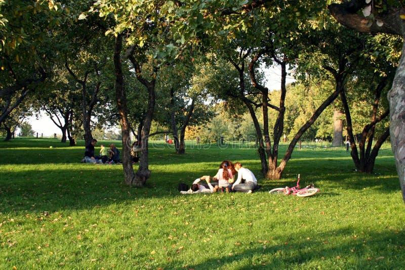 De rust van de familie in park stock fotografie