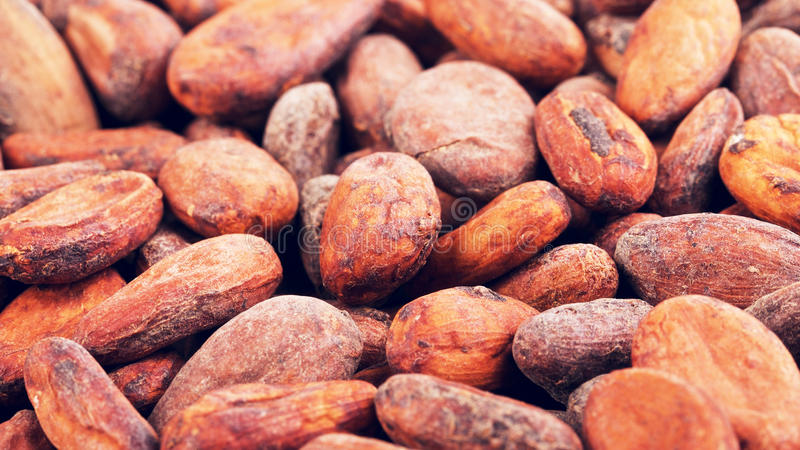 De ruwe Achtergrond van Cacaobonen royalty-vrije stock afbeelding