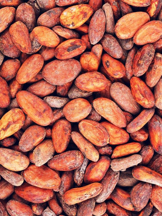De ruwe Achtergrond van Cacaobonen royalty-vrije stock foto's