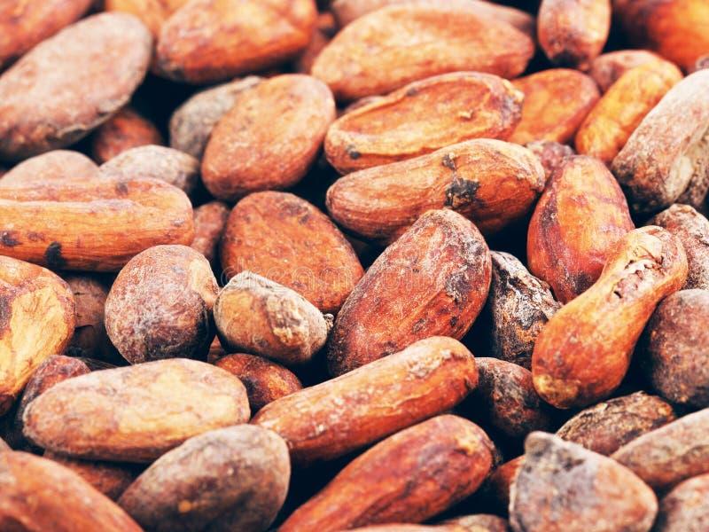 De ruwe Achtergrond van Cacaobonen stock afbeeldingen