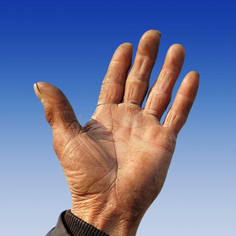 De ruwe hand van de landbouwer royalty-vrije stock foto