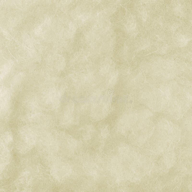 De ruwe Merinos Macroclose-up van de Schapenwol, de Grote Gedetailleerde Witte Geweven Ruimteachtergrond van het Patroonexemplaar stock foto's