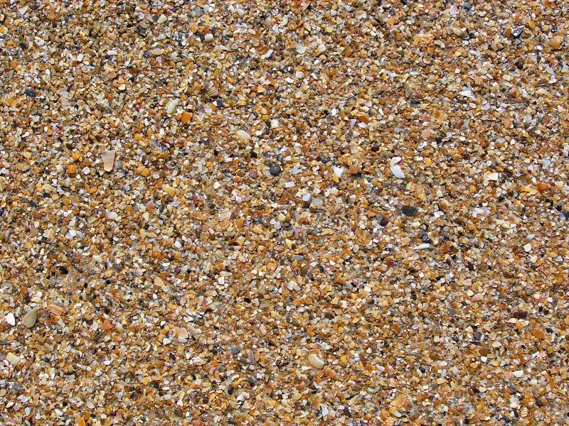 De ruwe shell van de fractie bruine mossel textuur en de achtergrond van rotsdeeltjes Gritstone en zandvorming op overzees strand royalty-vrije stock fotografie