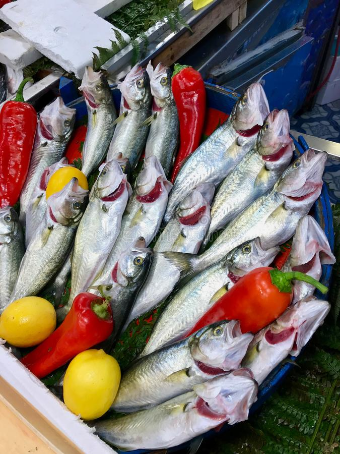 De ruwe Verse blauwbaars van de Vissenboniter, lufer voor verkoop in Marktbazaar in Istanboel stock foto's