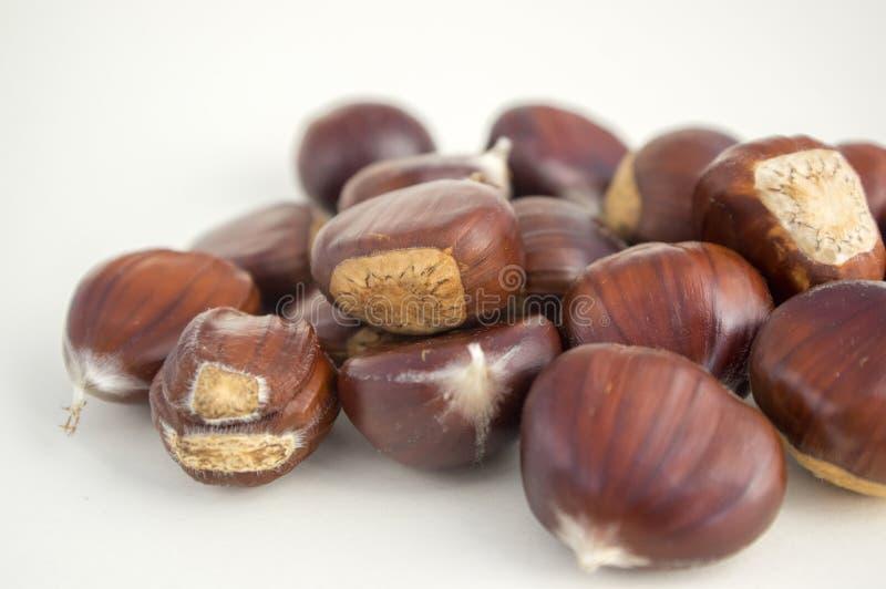 De ruwe zoete kastanjes verspreidden zich op een witte achtergrond, smakelijke en gezonde bruinachtige noten stock foto's