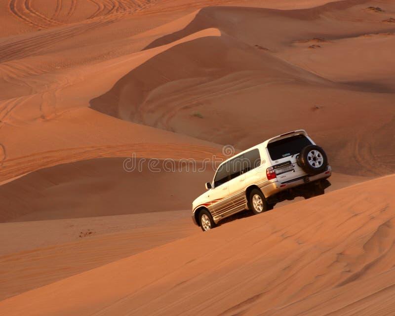 De Safari van de woestijn