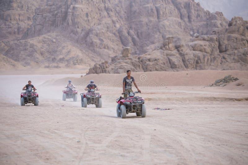 De safari van vierlingfietsen in de woestijn dichtbij stadssharm el sheikh, Zuid-Sinai, Egypte stock afbeelding