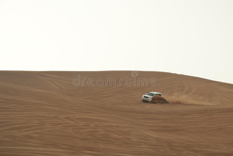 De safari van de woestijn stock foto