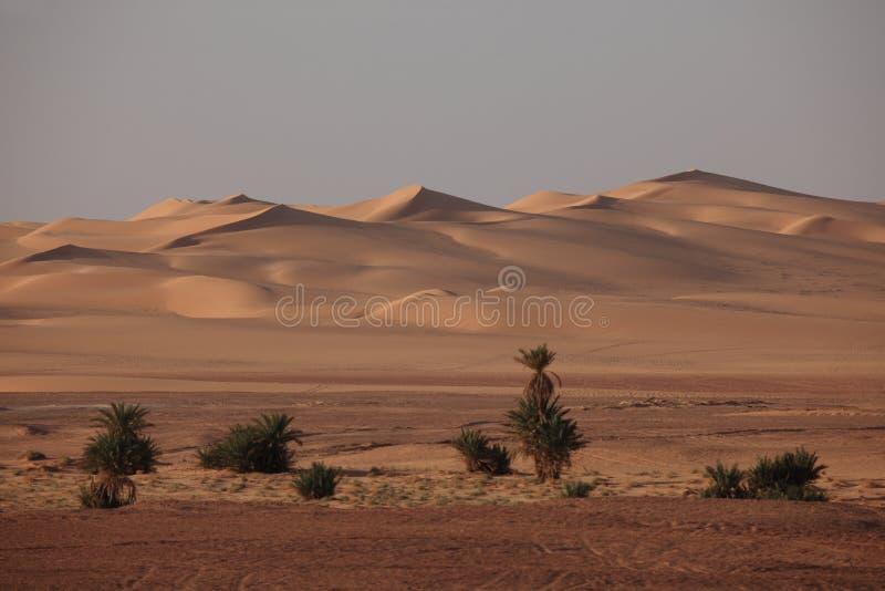 De Sahara in Algerije royalty-vrije stock afbeeldingen