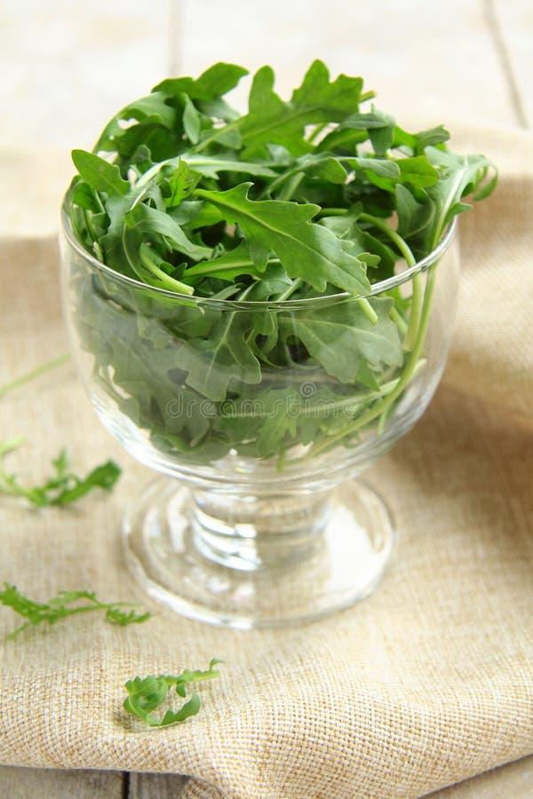 De salade van Arugula stock afbeeldingen