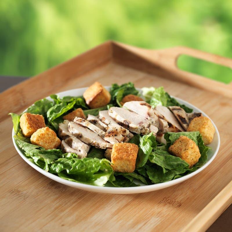 De salade van Caesar met geroosterde kip stock foto's
