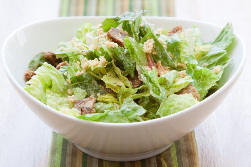 De Salade van Caesar van de veganist royalty-vrije stock fotografie