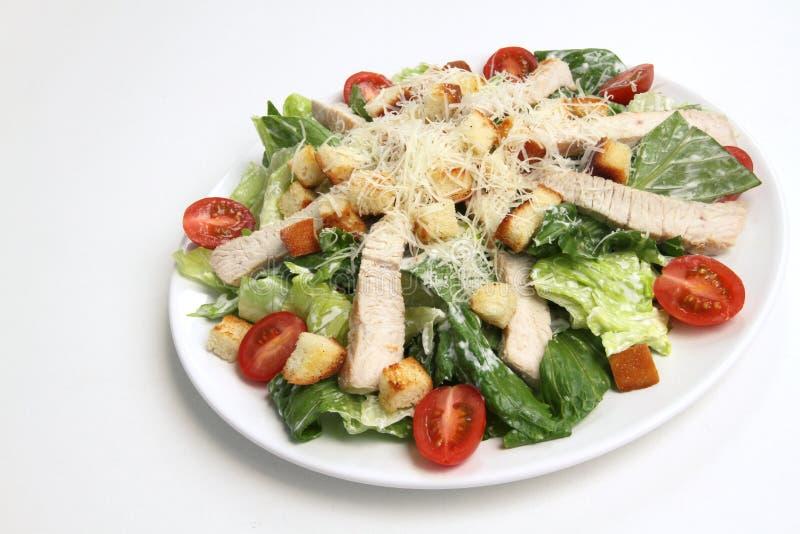 De salade van Cesar van de kip stock foto's
