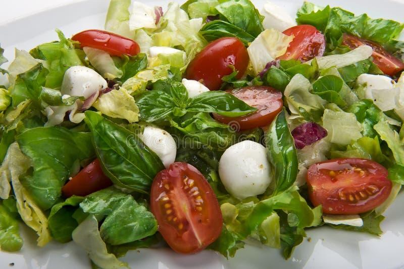De salade van de mozarella stock foto's
