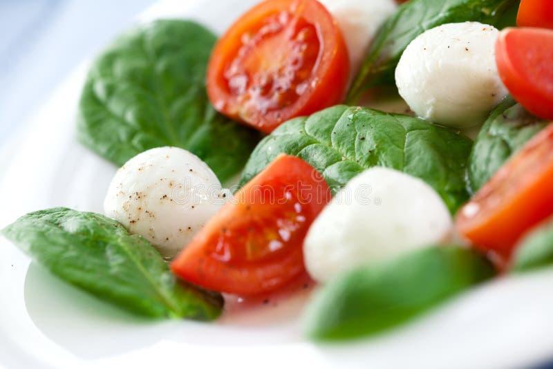De salade van de mozarella met spinazie stock afbeelding