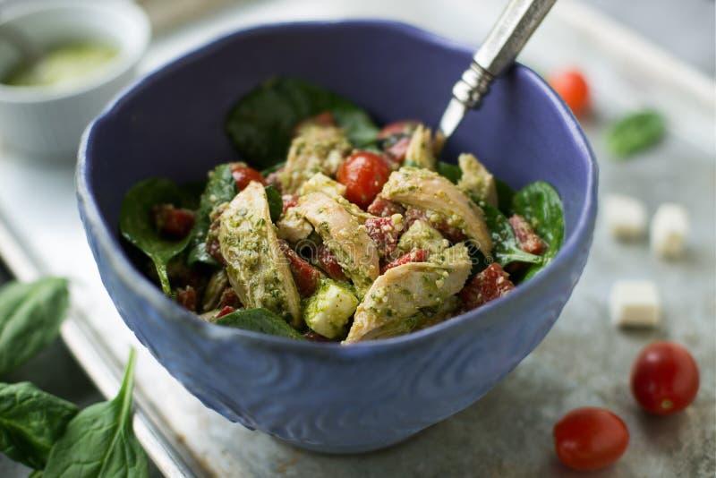 De Salade van de Pestokip stock foto's