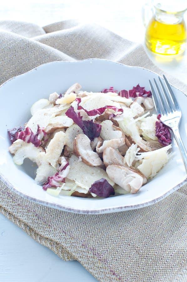 De salade van de Porcinipaddestoel met selderie, radicchio en Parmezaanse kaas van stock afbeeldingen