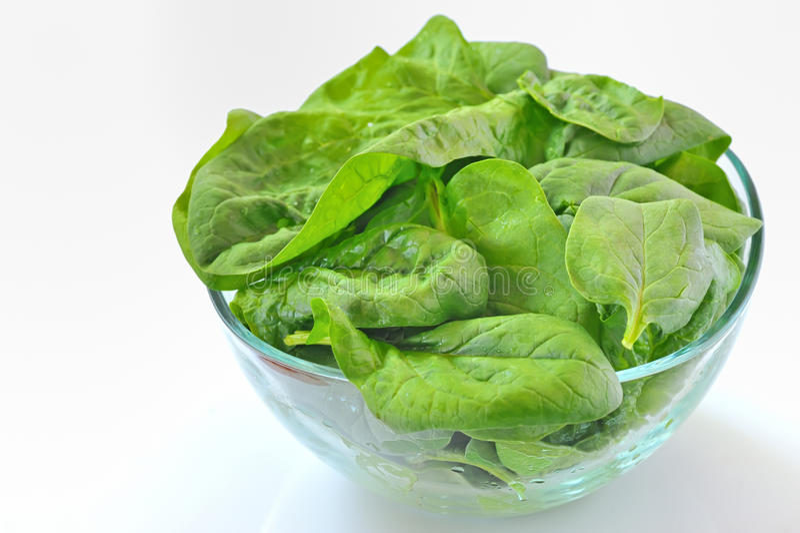 De salade van de spinazie stock foto's