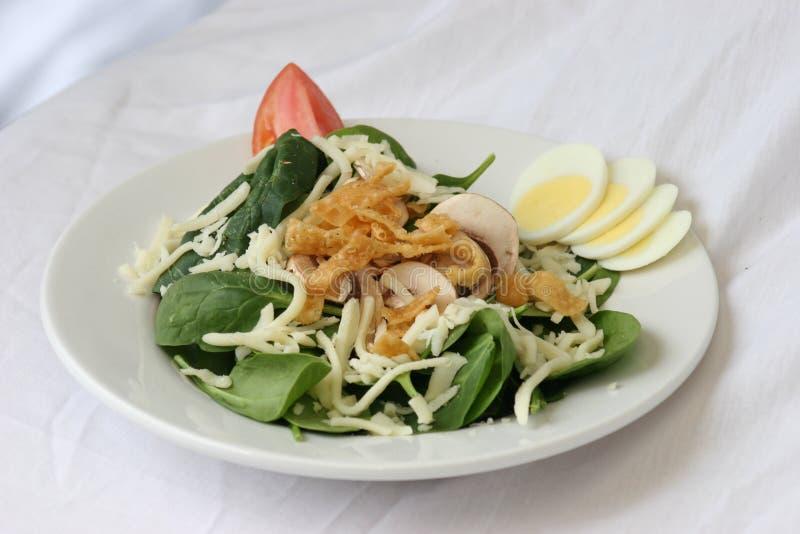 De Salade van de spinazie royalty-vrije stock afbeeldingen