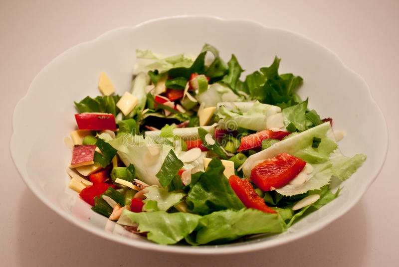 De Salade van de tuin stock afbeelding