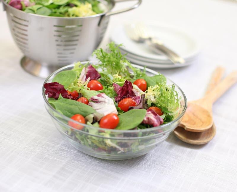 De salade van de zomer royalty-vrije stock afbeeldingen