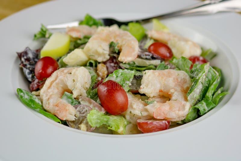 De Salade van garnalenwaldorf royalty-vrije stock foto