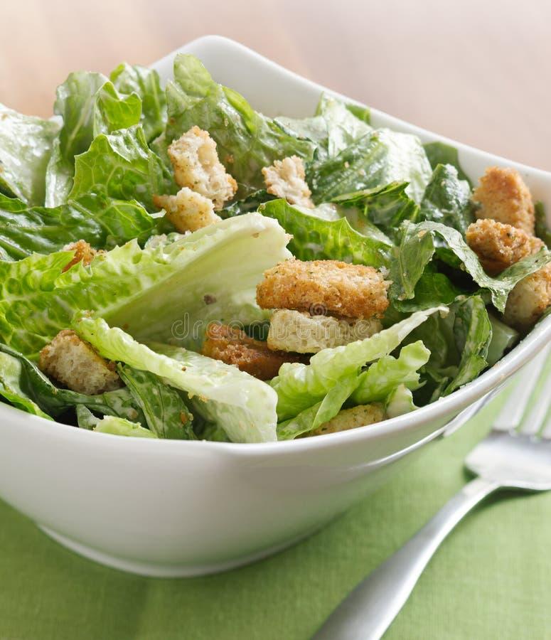 De saladeclose-up van Caesar royalty-vrije stock foto's