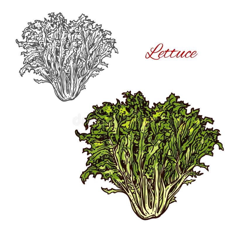 De saladepictogram van de sla vectorschets stock illustratie