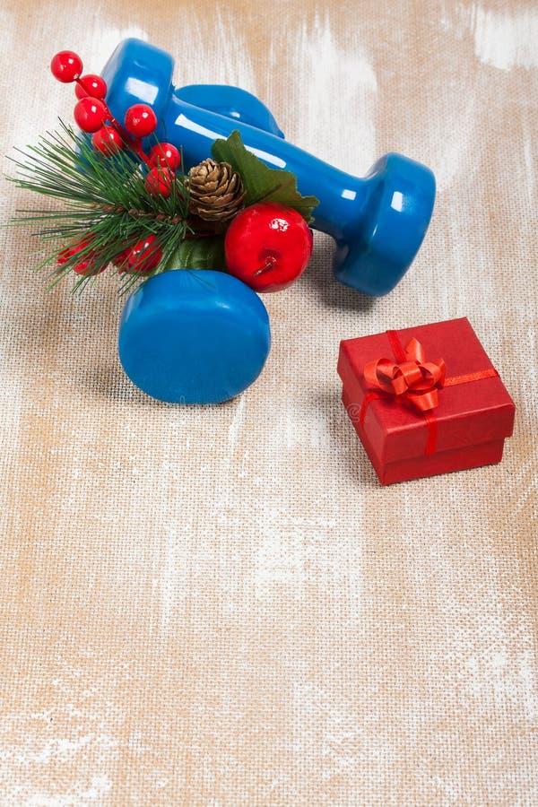 De samenstelling van de Kerstmissport met domoren, rode giftdoos, berrie stock foto