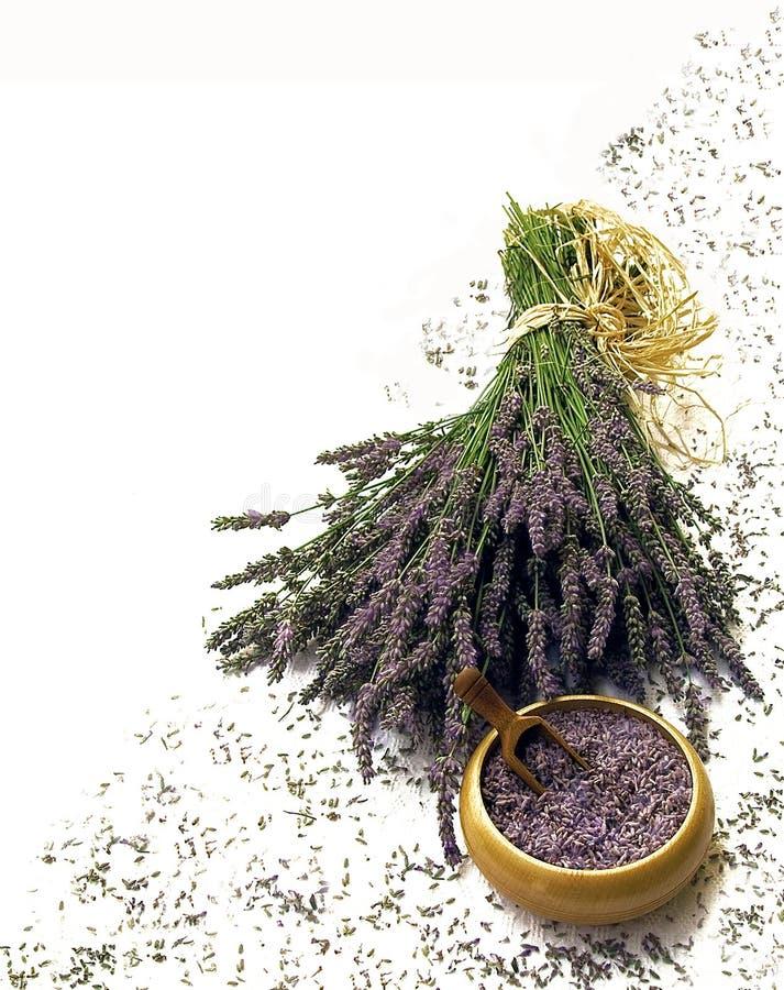De samenstelling van de lavendel op wit stock foto