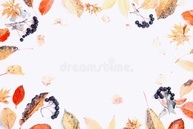 De samenstelling van de herfst De vaas met droog doorbladert, appel en kaarsen bij het ontslaan Kader van de herfst droge multi-c royalty-vrije stock foto's